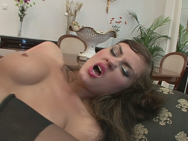 Aroused brunette whore in stockings getting curvy ass fucked by a large shaft Backdoor Pumpers XXX Porn Tube Video Image