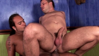 Attractive brunette gay Sandra getting anally screwed by horny Matheus
