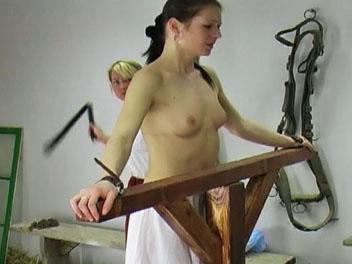Barn Whipping