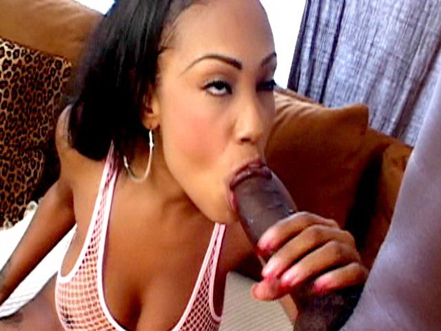 Big meloned black smoker whore Lacey Duvalle sucking a monster dark phallus Smokers Erotica XXX Porn Tube Video Image
