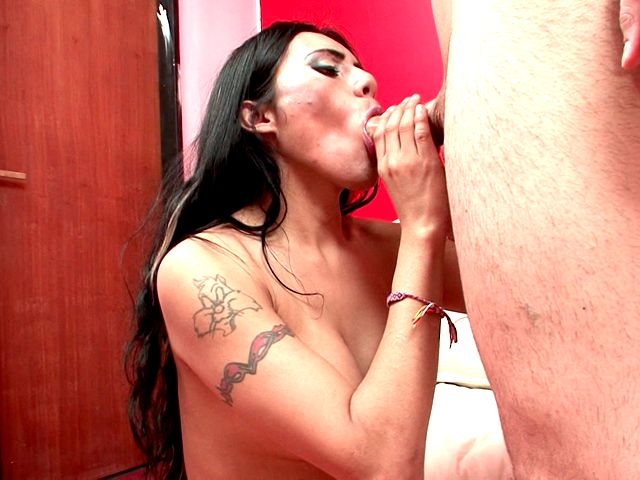 Big meloned brunette shemale angel Zafiro sucking a thick schlong and licking balls with lust