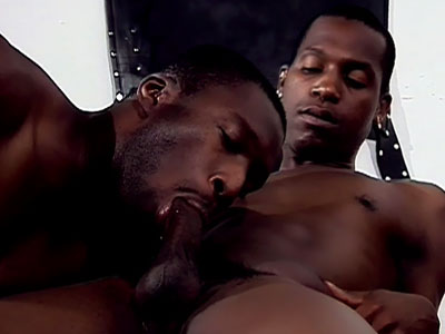 Black Thugs Having A Gay Orgy