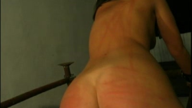 bound-and-bullwhipped_01