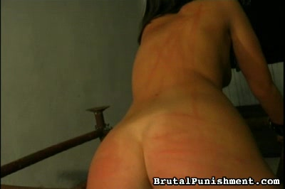 Bound and Bullwhipped Brutal Punishment XXX Porn Tube Video Image