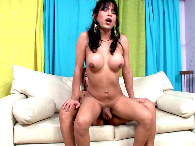 Busty shemale hottie Melanie gets sexy butt fucked by tranny Vanessa