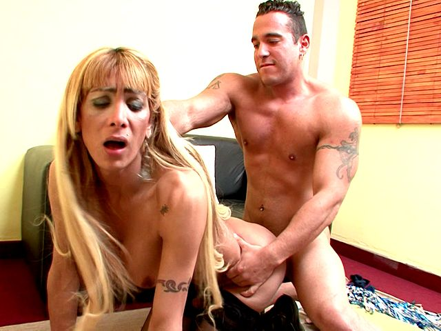 Chesty blonde shemale cheerleader Celeste gets round booty smashed by a fat dick doggie