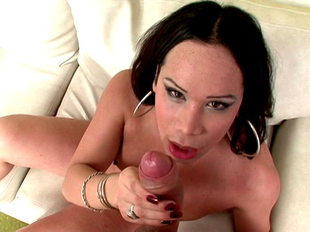 Delicious brunette shemale Lucrecia slurping a huge shaft in POV style