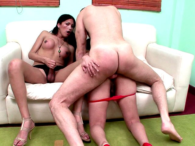 Enchanting brunette shemales Paola And Zafiro gets butts hammered by a monster dick on the couch