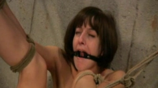 FrogTie Bondage Pleasure