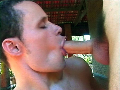 Gay Latino Danilo Mouthing a Cock Hard Latin Gays XXX Porn Tube Video Image