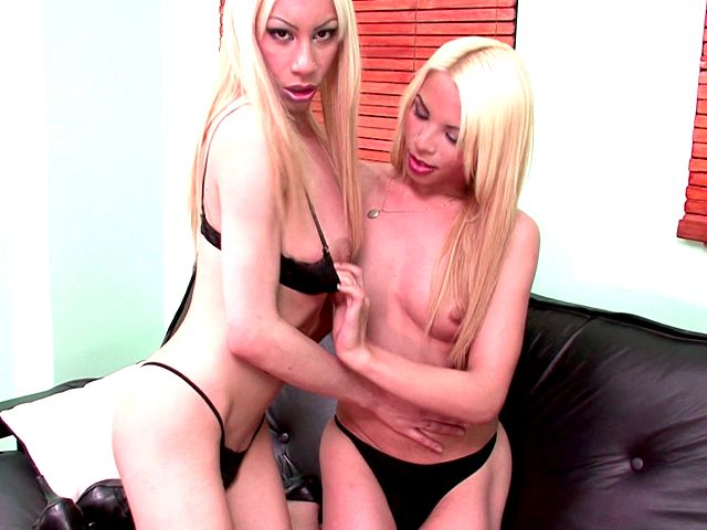 Good looking blonde shemales Jimena And Victoria fucking asses on the couch