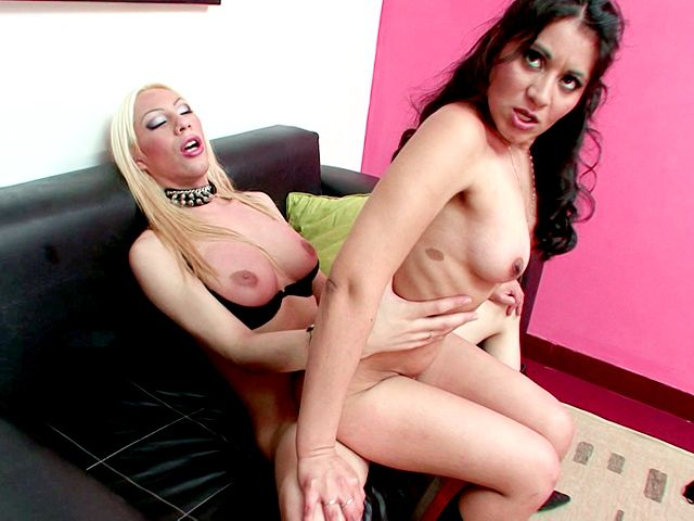 Gorgeous brunette babe Antonella getting pounded by blonde shemale Jimena