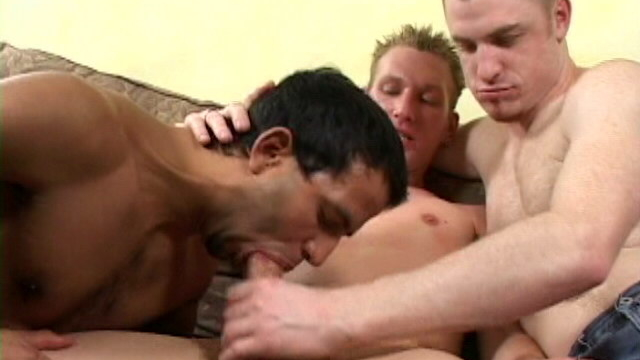lovely-blonde-gay-tyler-getting-massive-dong-sucked-by-two-uninhibited-hunks_01