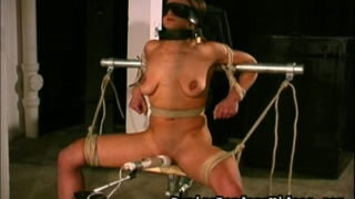 nipple clamps to neck bar