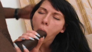 Raven haired whore Jenifer gives blowjob to a black stud