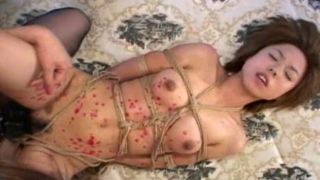 Rope Bound Japanese Enjoys Candle Wax And Dildo