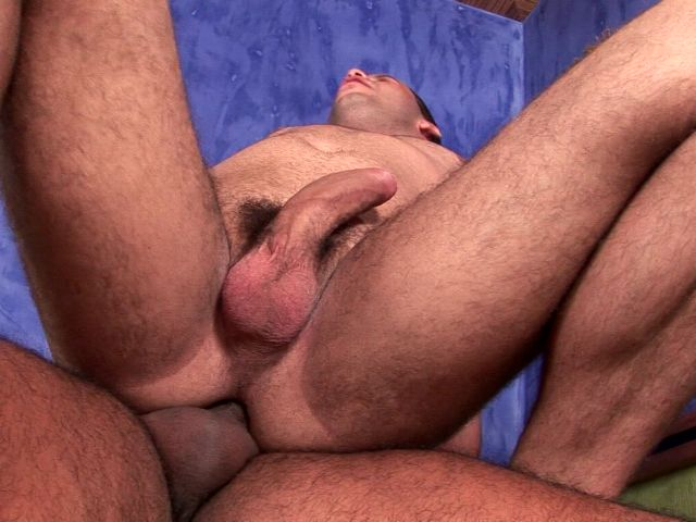 Seductive Brunette Gay Sandra Getting Anally Slammed By Horny Matheus On The Table Free Gay Porn Access XXX Porn Tube Video Image