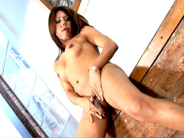 Seductive brunette tranny girl Selia massaging her tits and getting fucked