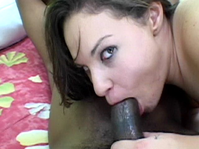 Sexual brunette babe with hairy pussy Leenuh sucking a giant black shaft Only Bush XXX Porn Tube Video Image
