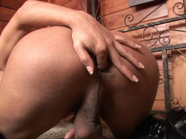 Sexy shemale Alana fingers her bubble arse and wanks her massive prick