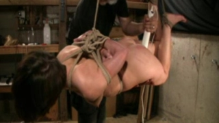Shibari Suspension
