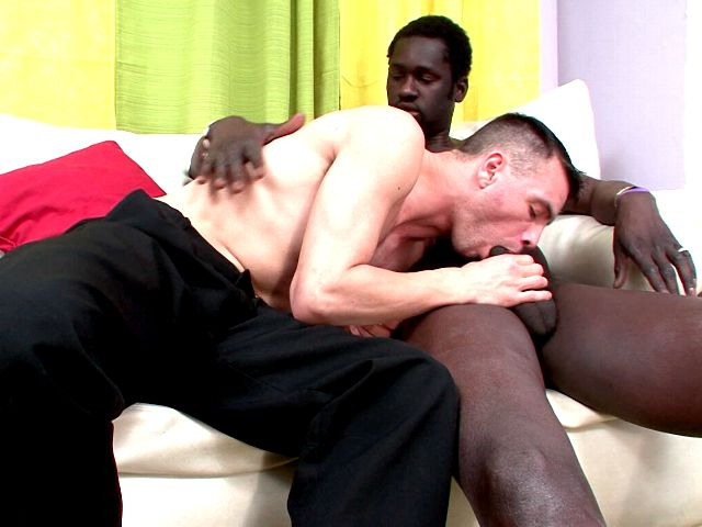 Sweet brunette young gay John sucking Canu's impossible black penis on the couch Impossible Gay Cocks XXX Porn Tube Video Image