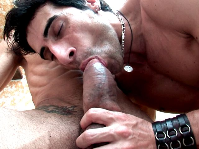 Tattooed brunette gays Apolo And Fernando sucking their impossible shafts