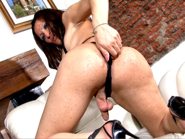 Tempting brunette tranny girl in black bikini Triany wanking cock and showing asshole