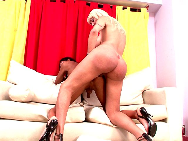 Tempting shemale bitch Celeste gets big butt fucked by hottie Violeta Shemale Lolipops XXX Porn Tube Video Image