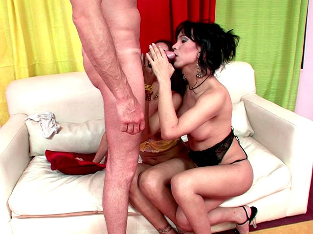 Tempting shemales in sexy lingerie and high heels Melanie And Vanessa touching their bodies with lust Shemale Pumpers XXX Porn Tube Video Image