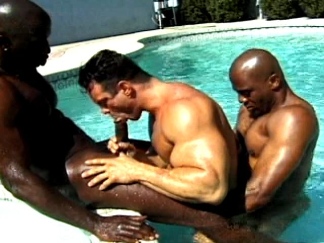 Two horny and muscle bodied black gays fucking a white dude in the pool Gay Video Base XXX Porn Tube Video Image
