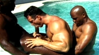Two Horny And Muscle Bodied Black Gays Fucking A White Dude In The Pool